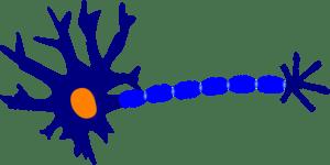 la démarche scientifique du psychothérapeute en Ariège